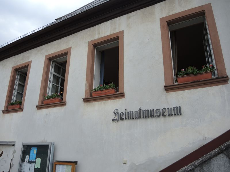 Blumen_am_Museum
