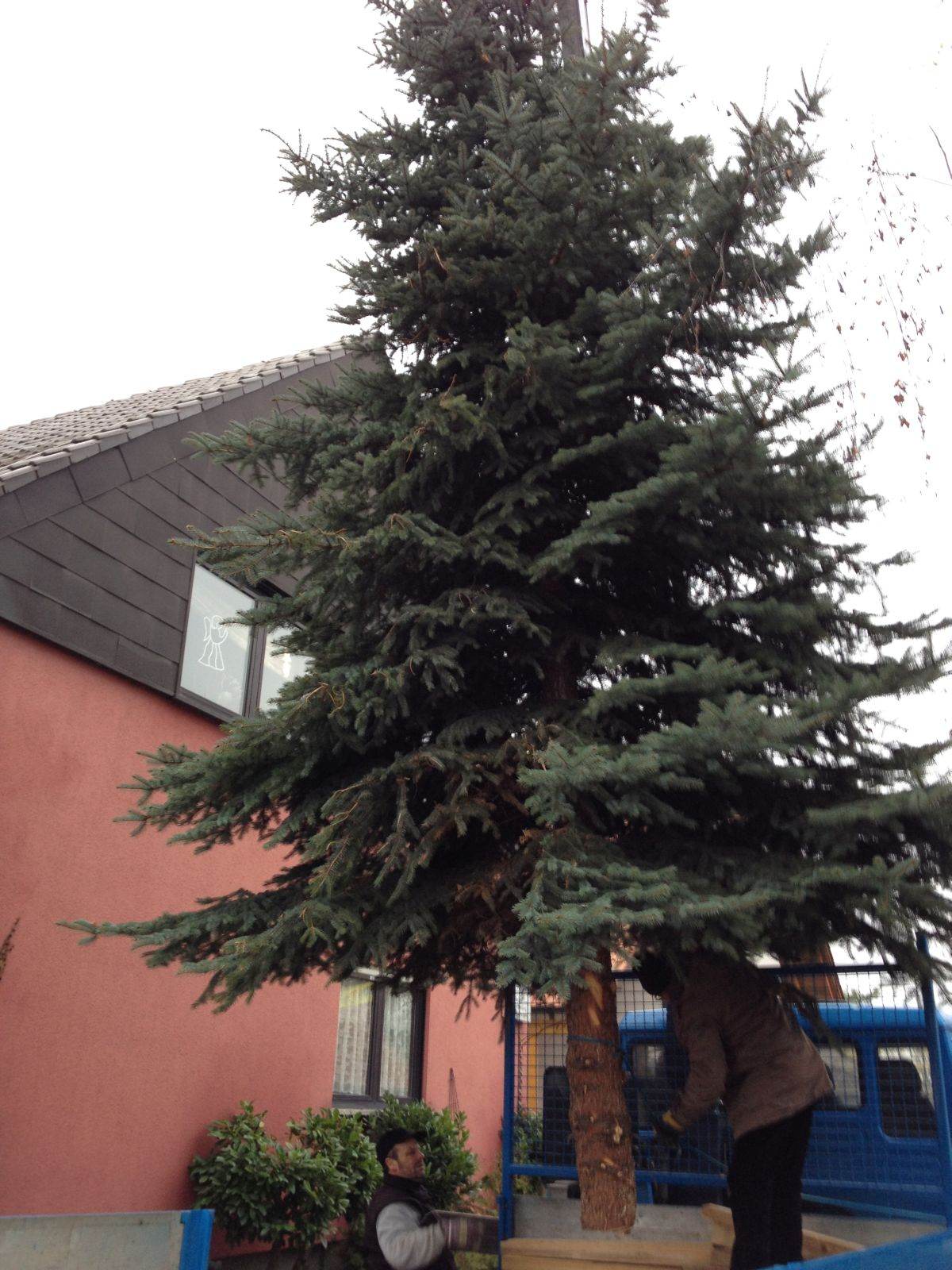 Christbaum_2014_04