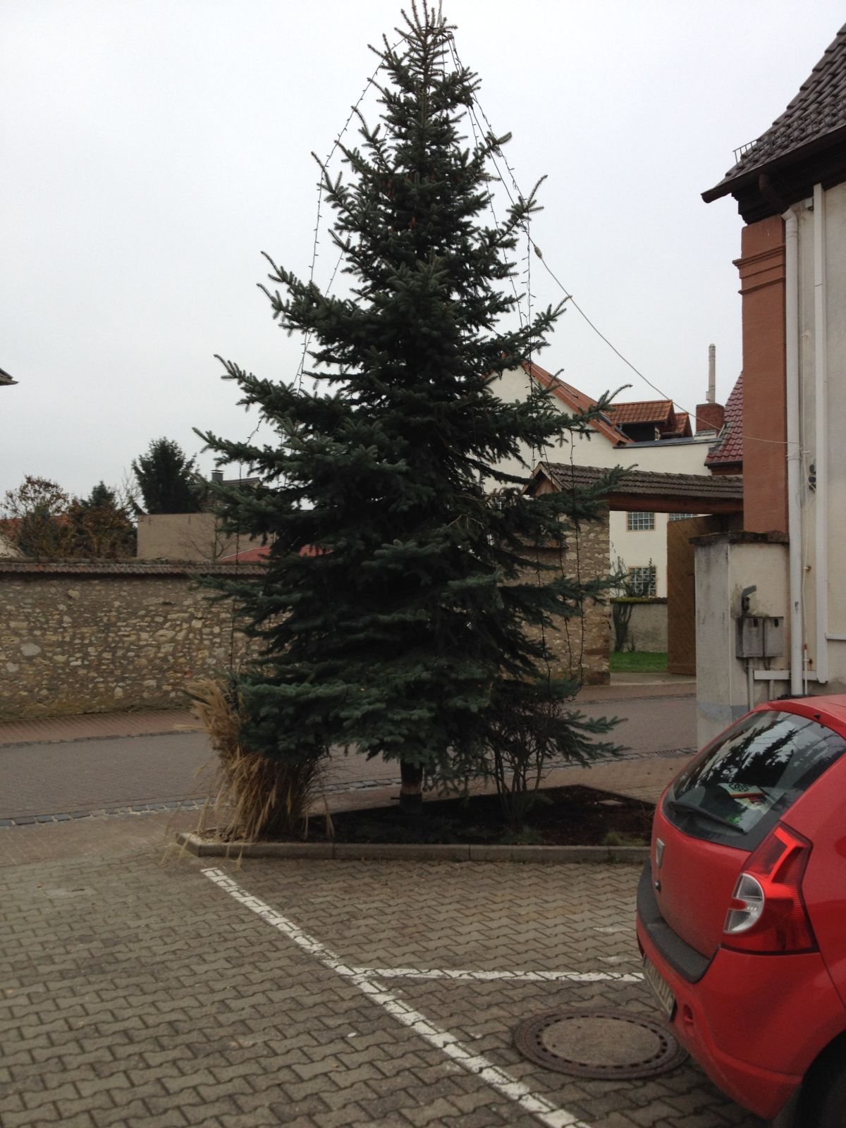 Christbaum_2014_08
