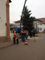 Christbaum_2014_07